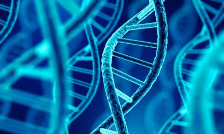 Genetic Engineering: An attempt to ask the right questions
